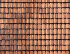 dirt roof texture