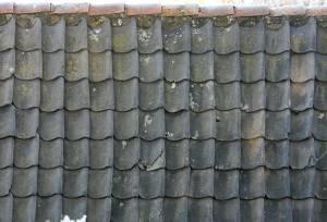 dark-roofing-albedo-texture