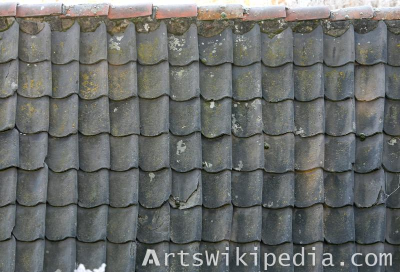 dark roofing albedo texture