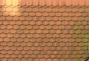hex-tile-ceramic-roof-texture