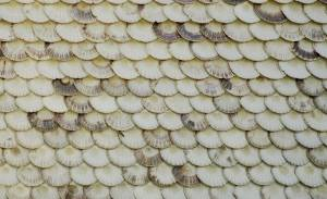 shell-shingle-roofing-texture