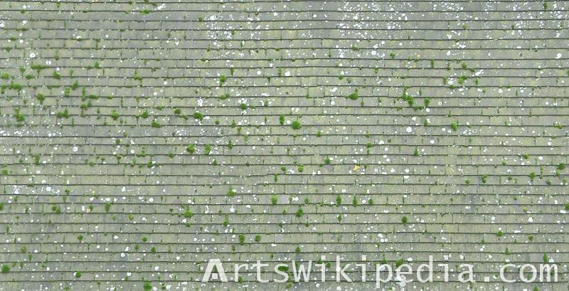 free high quality roof albedo map