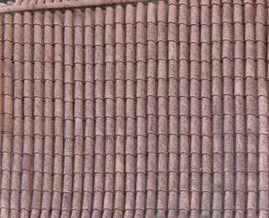 shingles-albedo-texture