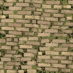 free-pavement-on-grass-texture