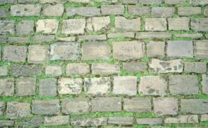pavement-stone-over-grass