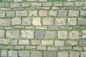 pavement on grass texture