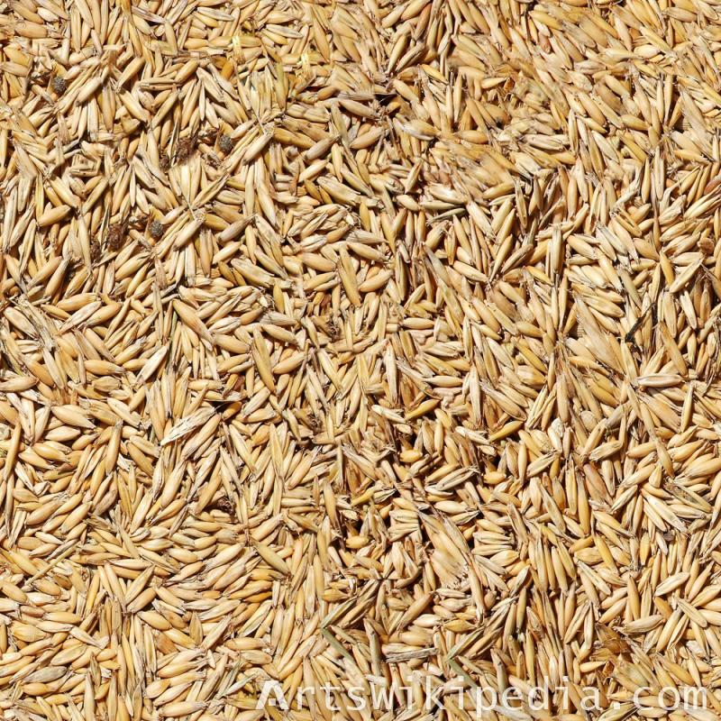 Seamless Rice covered hulls textures