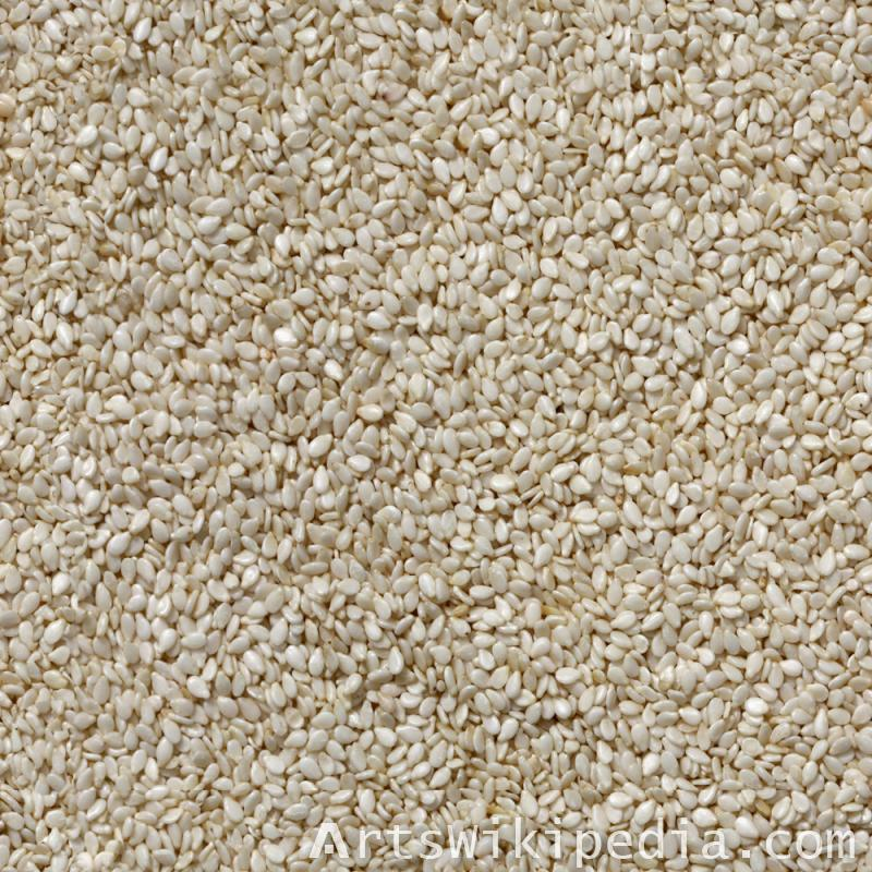 Free Seamless White Seeds