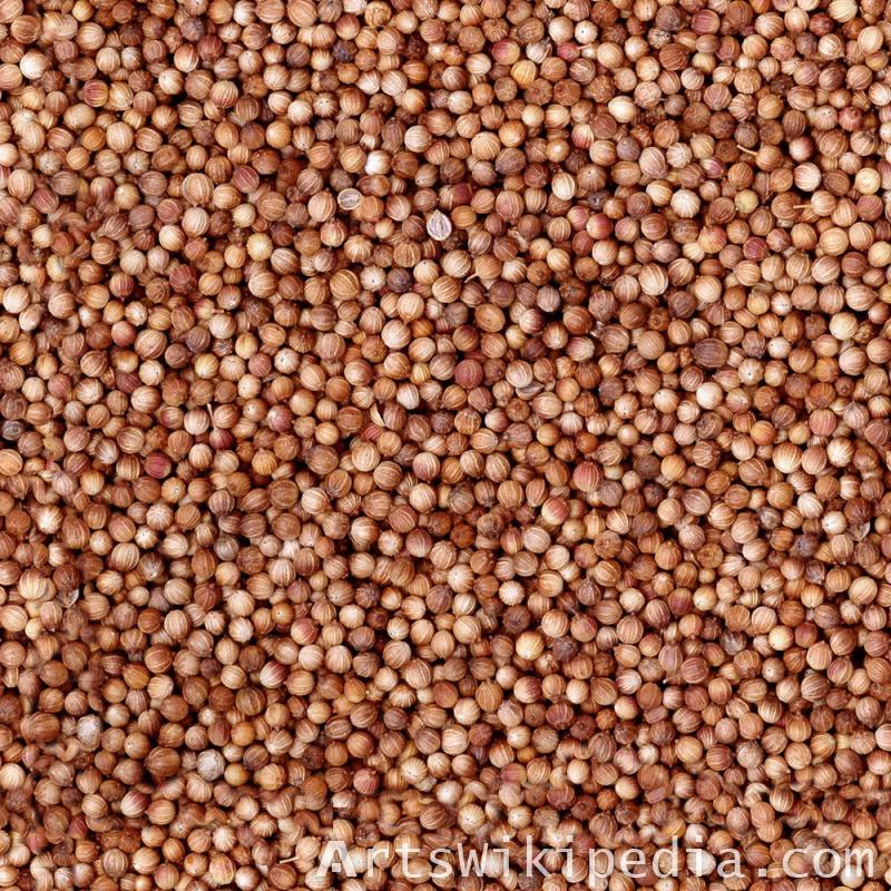 Seamless Seeds Textures
