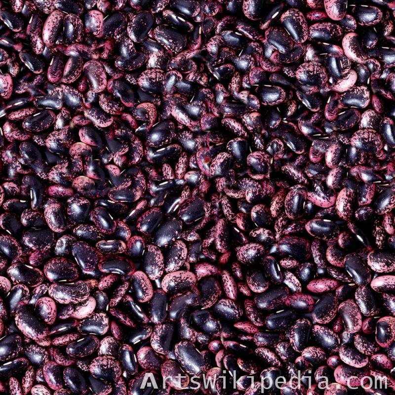 Purple Speckled Kidney Bean texture