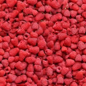 seamless-raspberry-texture