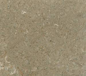 rough-brown-marble-free