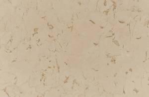 Sienna marble brown vine